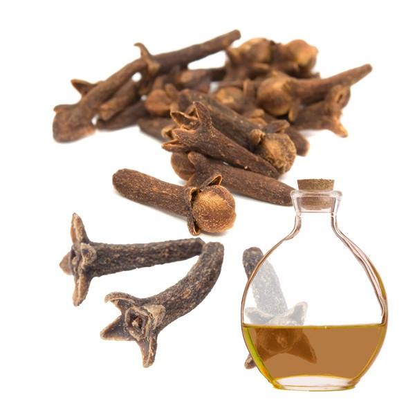 comprar-propriedades-azeites-oleo-essenciais-de-cravo-da-india-materiais-insumos-cosmetica-artesanal