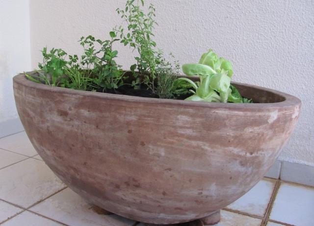 jardineira_temperos