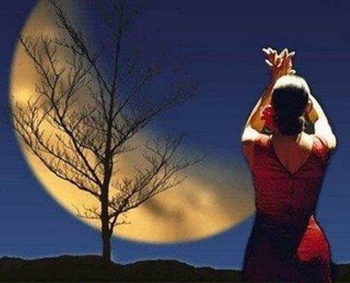cigana da lua