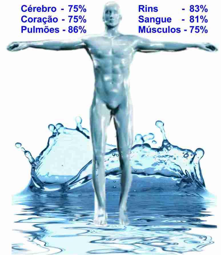 Corpo - água